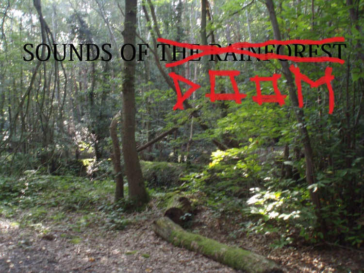 Sounds of The Rainforest Doom
